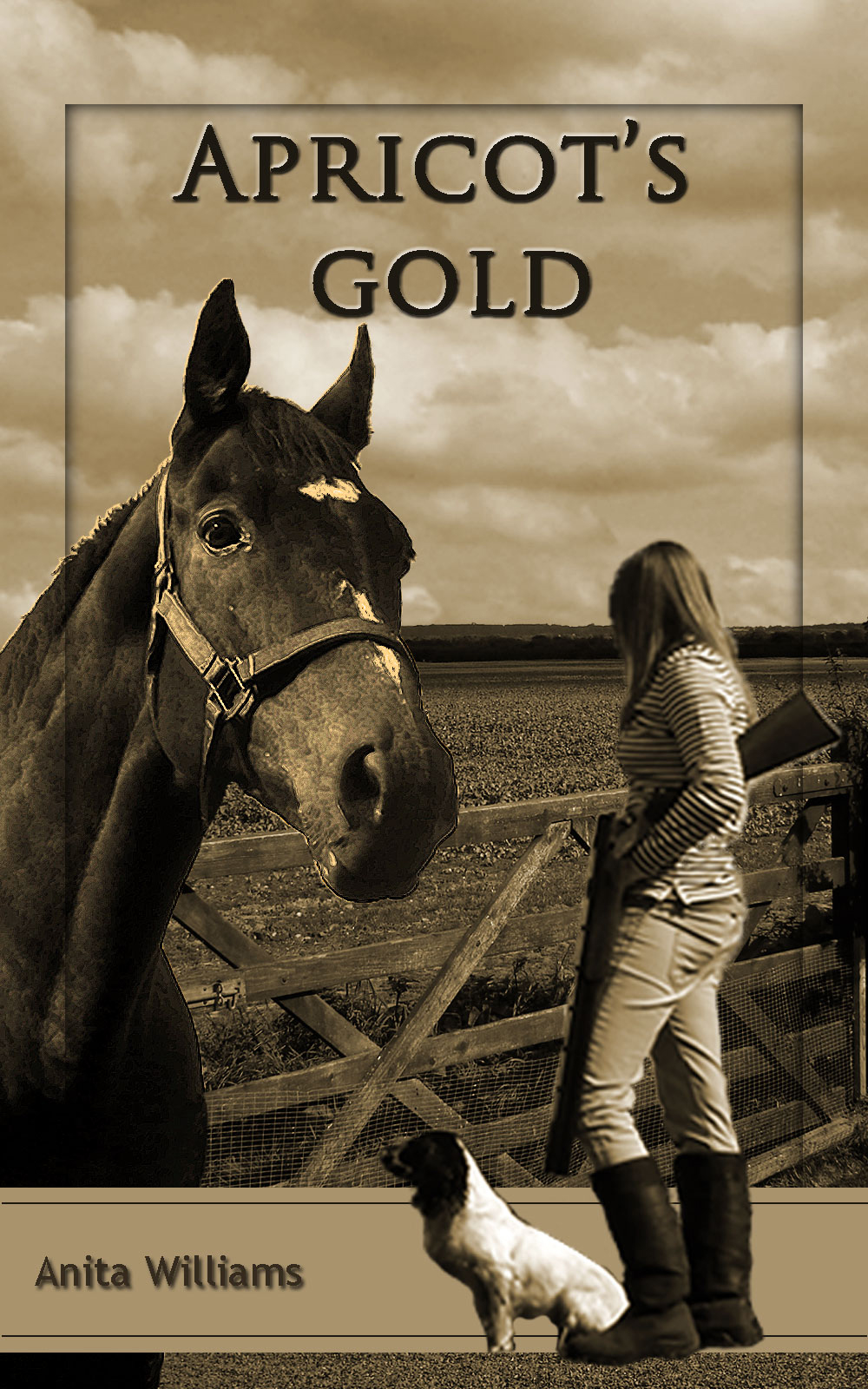 Apricots Gold book cover