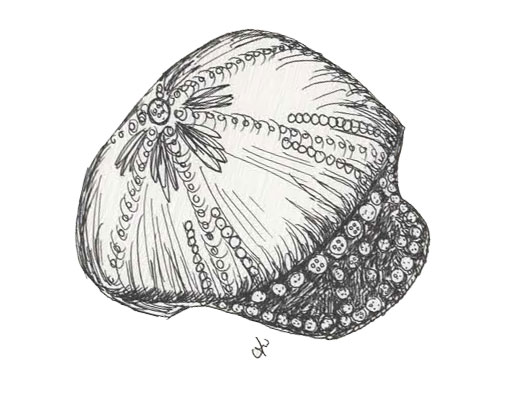 pearly-hat
